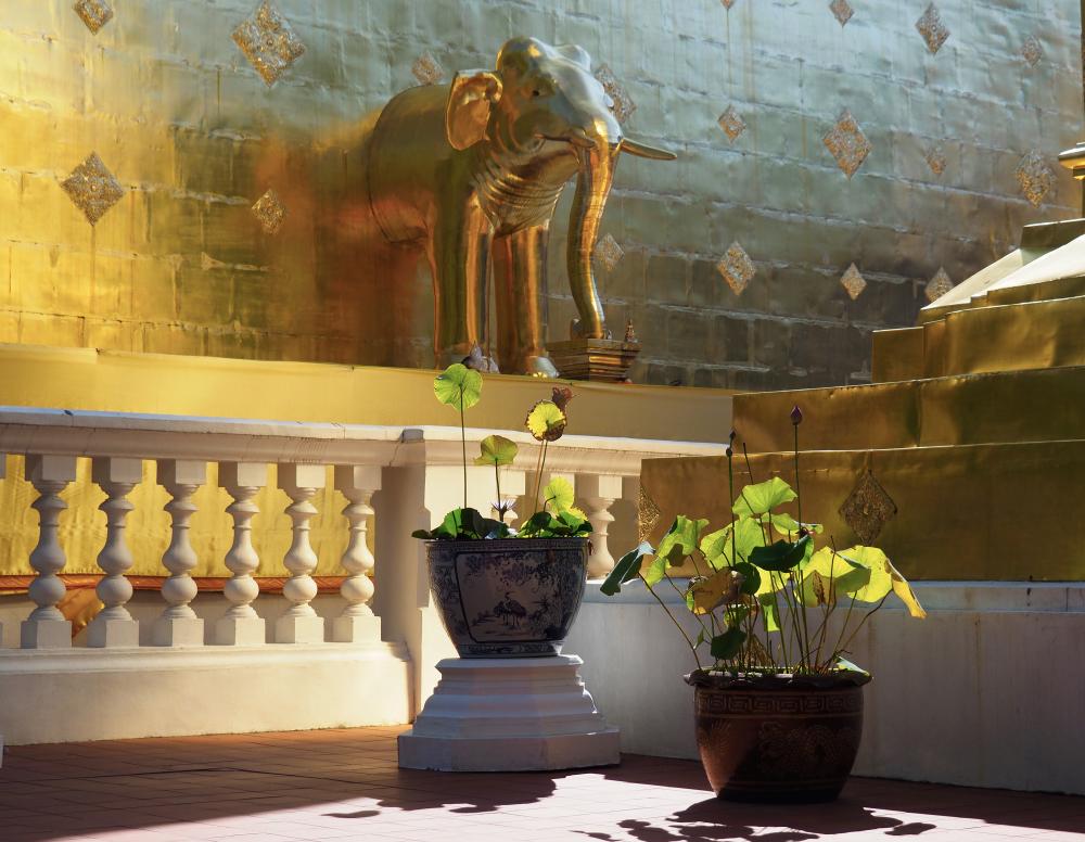 Lumière au Wat Phra Singh