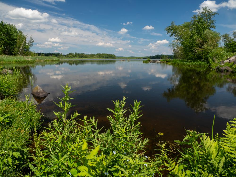 Mon coin préféré au lac Boivin