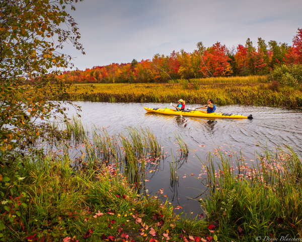 Kayak au lac