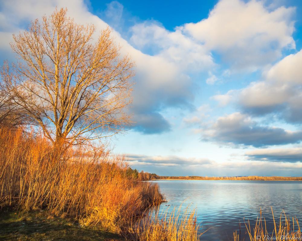 Bord du lac Boivin