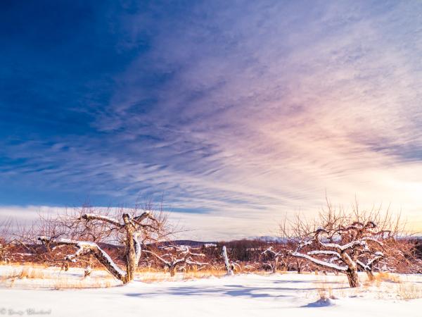 Ciel hivernal éclaté