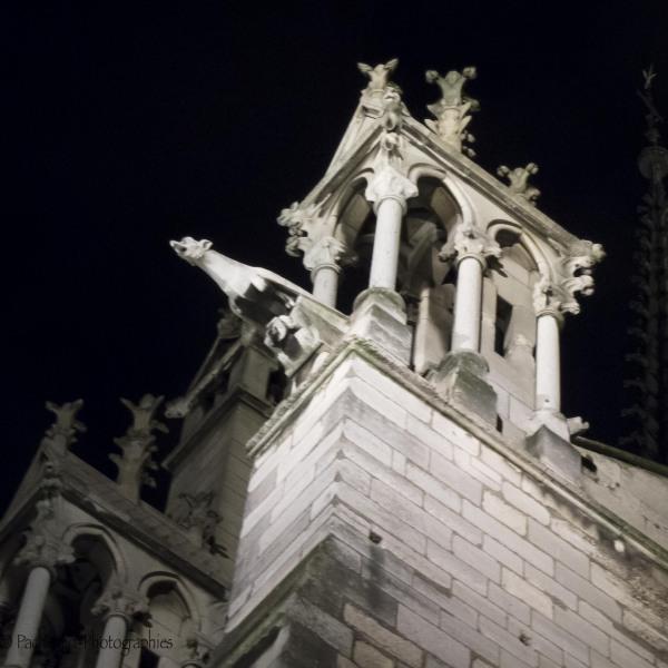 Gargouilles à Notre Dame de Paris