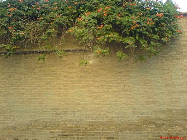 مشهد-كوچه باغ سنگي....ديار خاطره هاي غريب