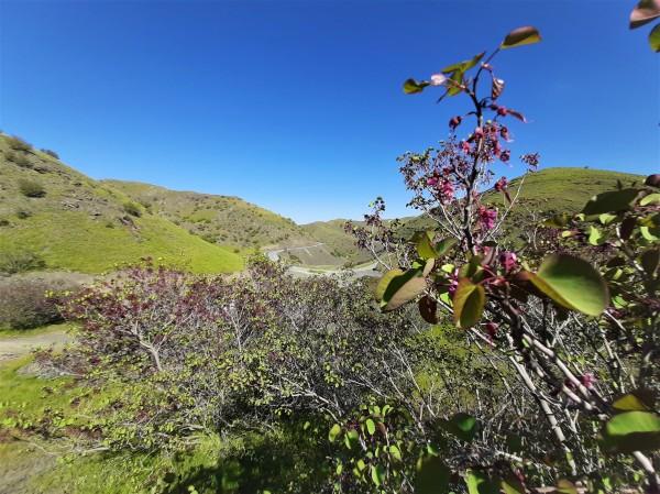 arghavan Valley - Torqabeh