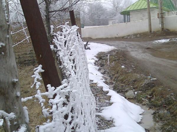 حصار برفی