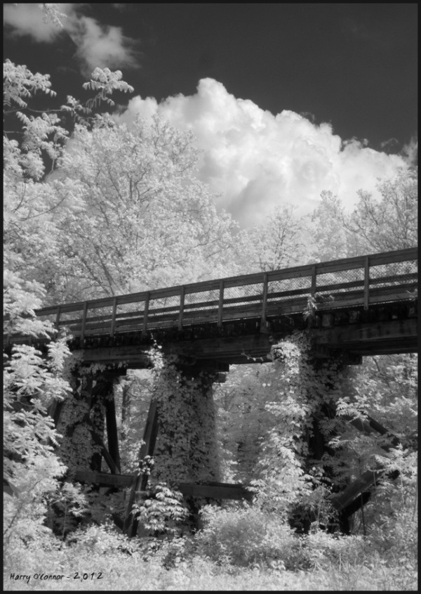 Infrared view of a vine covered railroad trestle