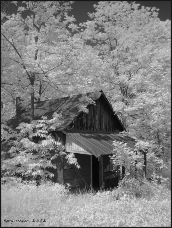 infrared cabin in the woods
