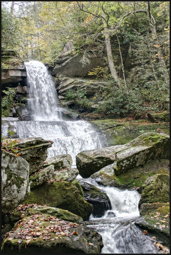 Maidenhair Falls