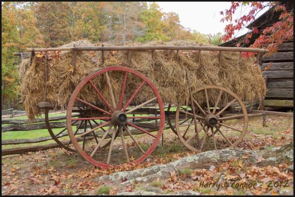 Hay wagon at Hart Square