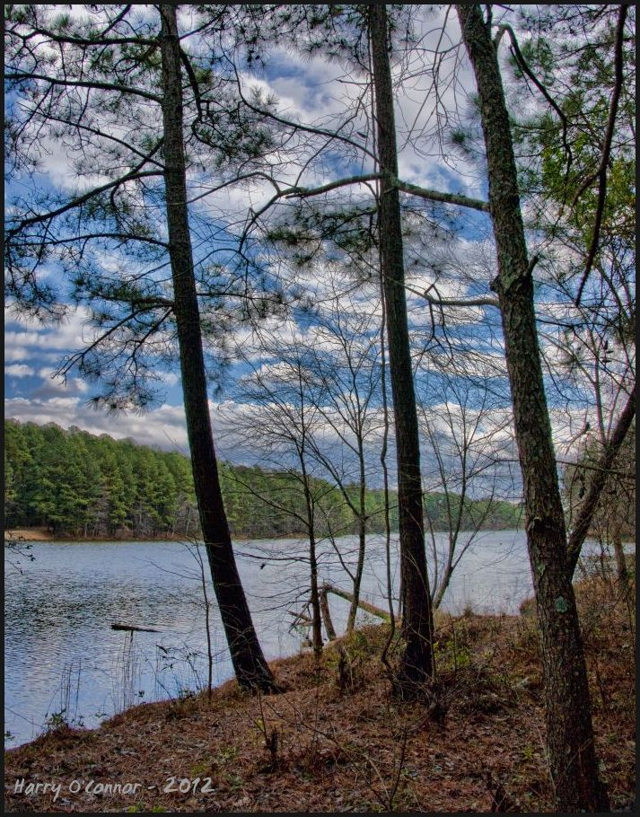 Lake Pine view II