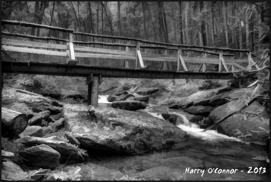 Wooden Bridge, Transylania Co NC, 2012