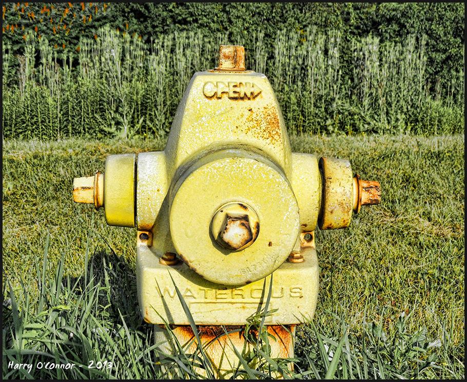 Yellow fireplug