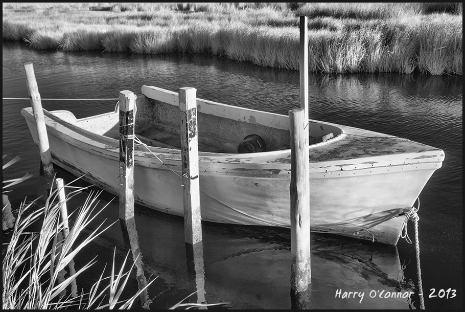 Boat and grasses
