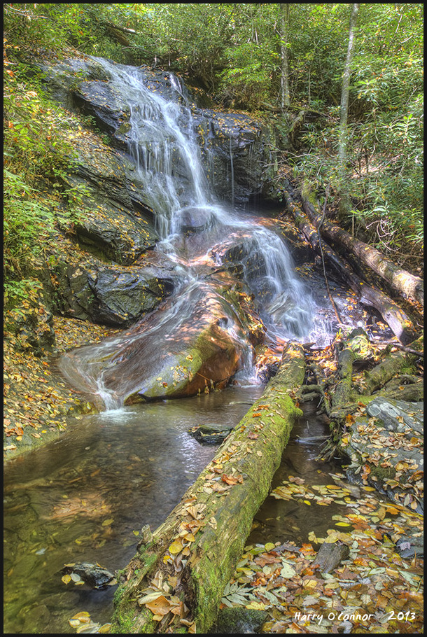 Log Hollow Falls