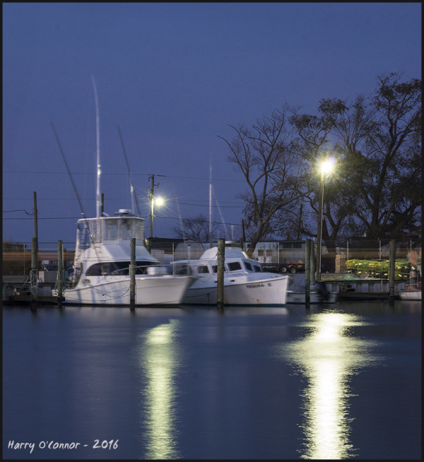 Night at the marina