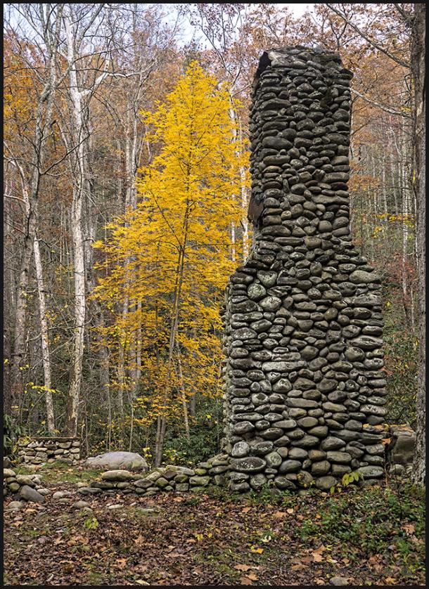Chimney and yellow tree