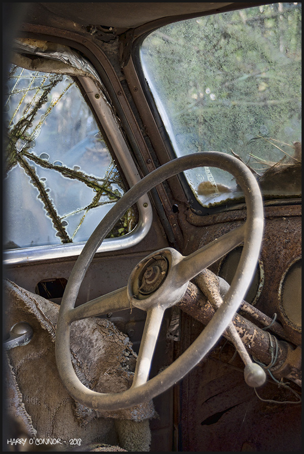 White steering wheel