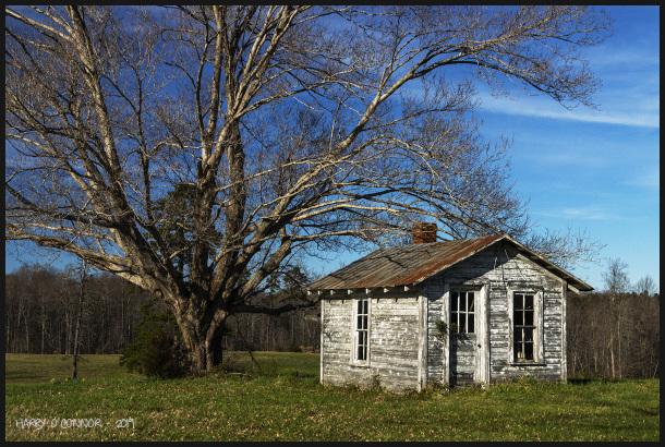 White shack