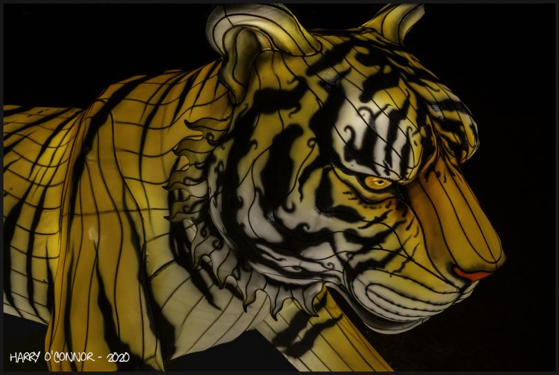 """""""Silk"""" Tiger"""
