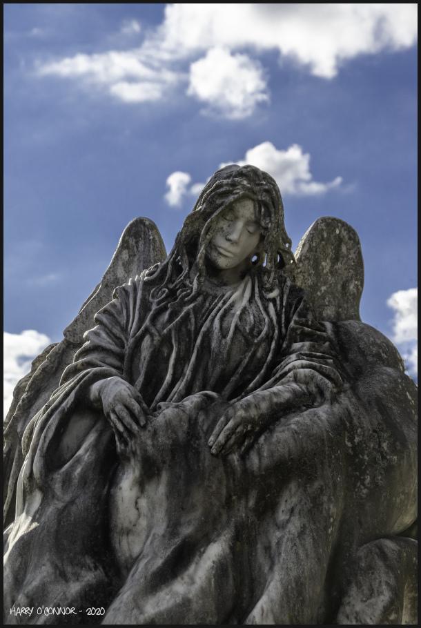 Surrogate Mourner
