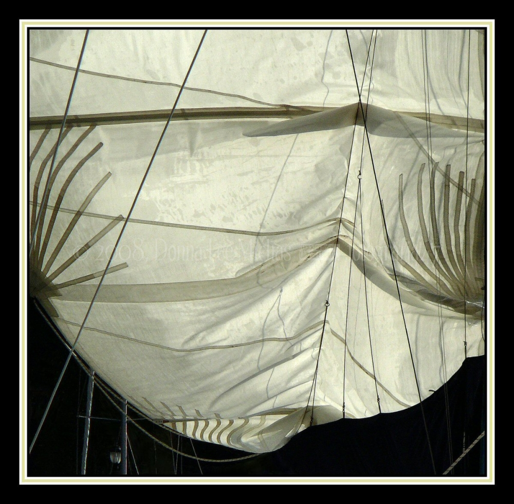 Sunlight through billowing sail on boat in NYC.