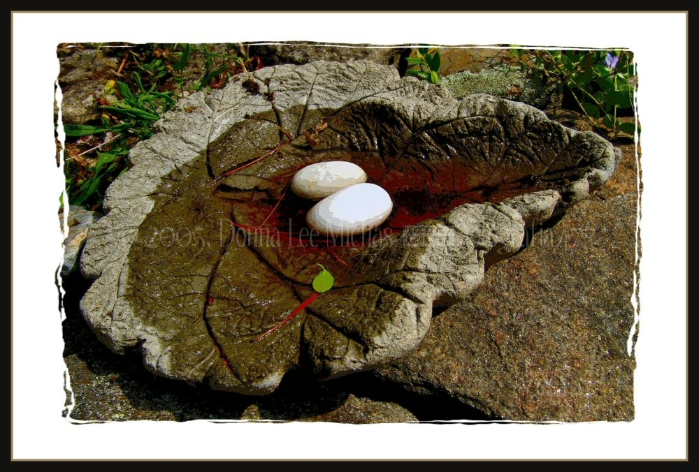 Solarized shot of two egg shaped stones in a bird