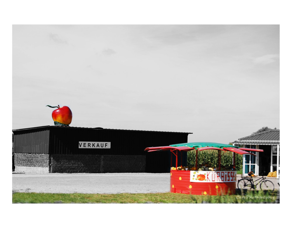 * --- Apple on the Roof --- *