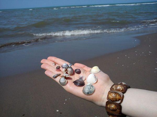 Lovely pearl...