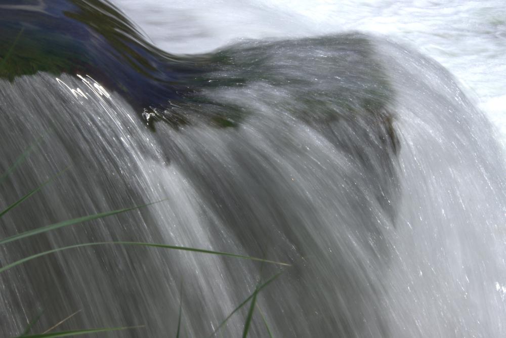 Cheveux d'eau