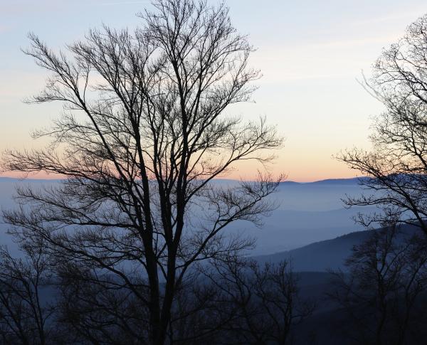 La ligne bleue des Vosges