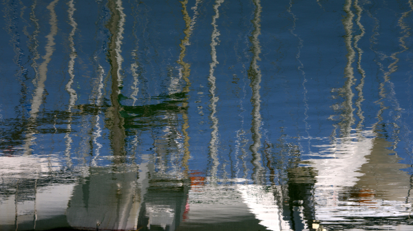 Des reflets et des ailes 2