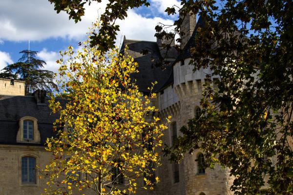 Le château de Campagne 3