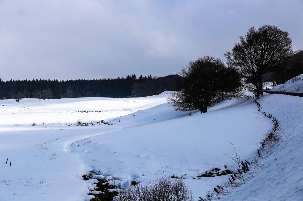 Paysage d'Auvergne 1