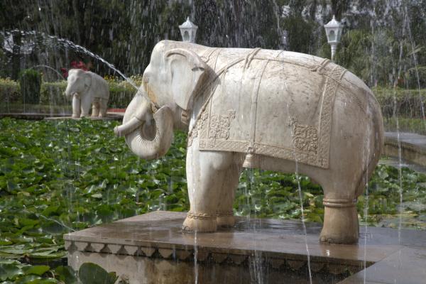 Les éléphants du jardin des demoiselles