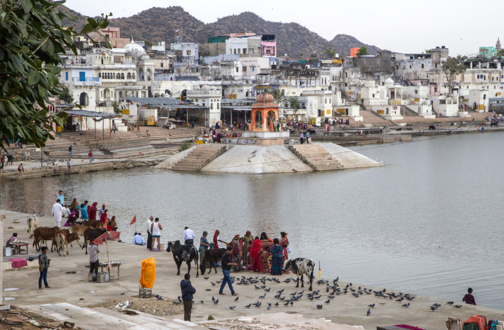 Pélerinage à Pushkar 1