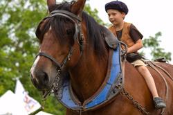 Jeune cavalier