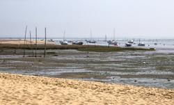 La Teste à marée basse 2