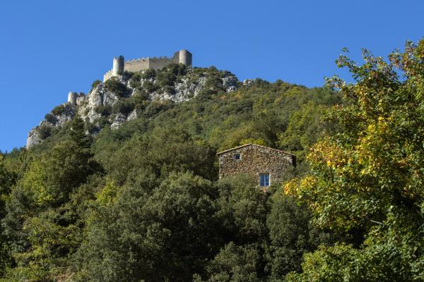 Château de Puylaurens.