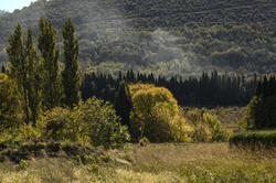Paysages du Roussillon 1