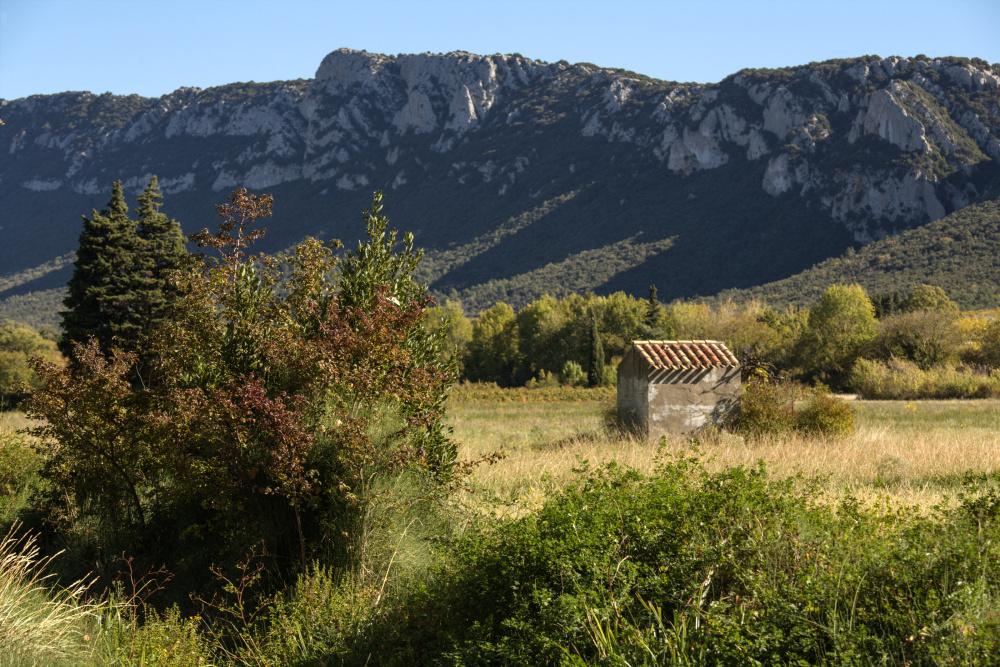 Paysages du Roussillon 2