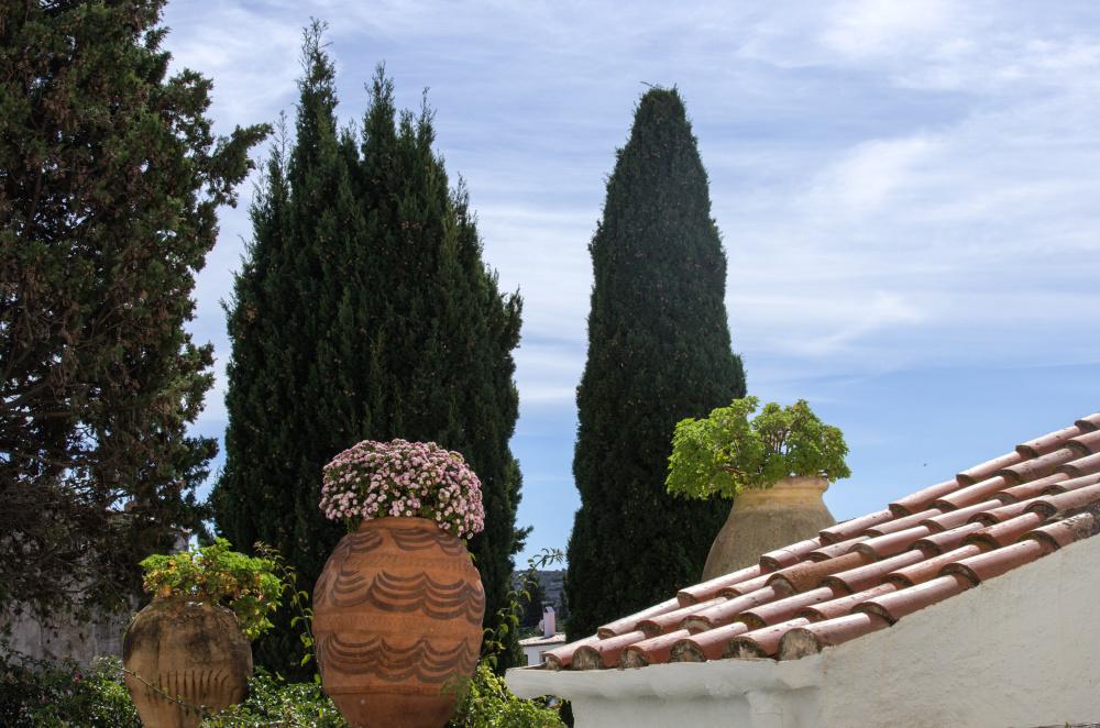 Les toits de Cadaques 1