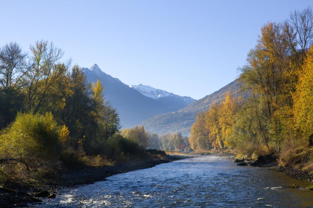 Le gave et les Pyrénées