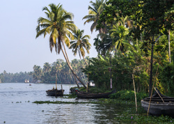 La vie paisible des Backwaters 1