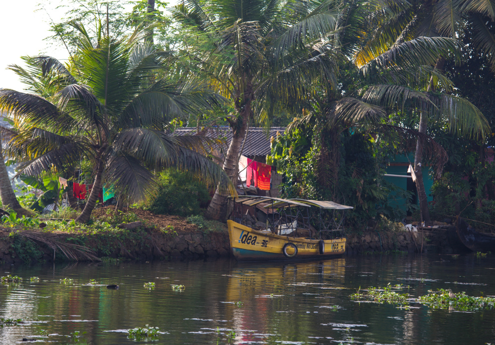 La vie paisible des Backwaters 2