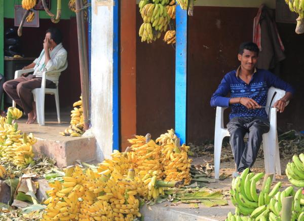 Au marché de Mysore 3