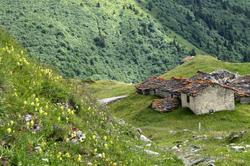 Paysage alpin 4