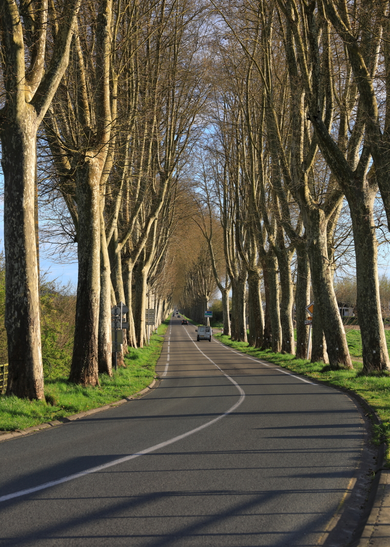 Balade en Lot et Garonne
