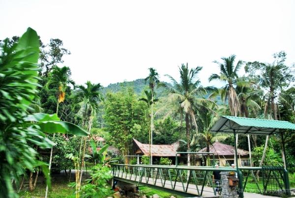 A Kampong Scene