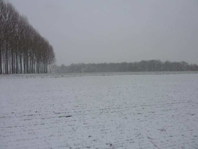 Blanche neige !