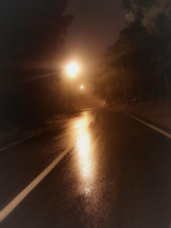 rainy walk